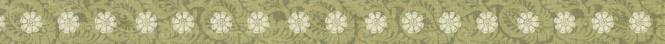 flowerborderthin.jpg